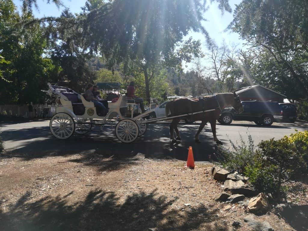 Horse carriage in Julian, CA
